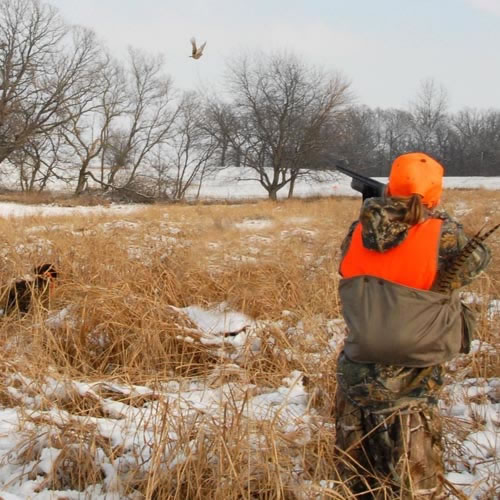 kids pheasant hunting